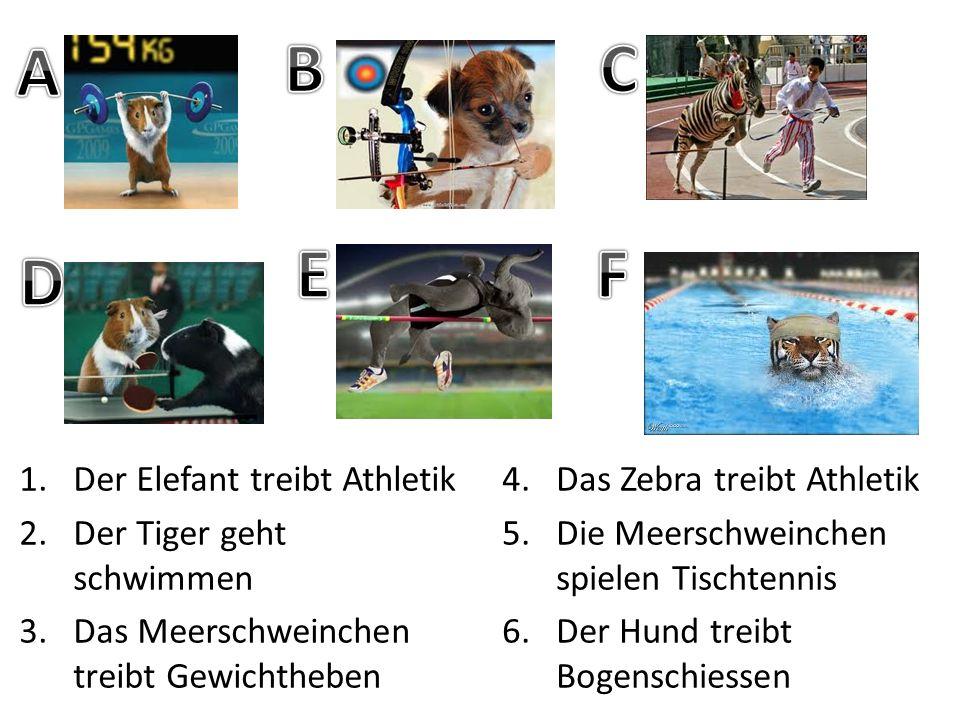 A B C E F D Der Elefant treibt Athletik Der Tiger geht schwimmen