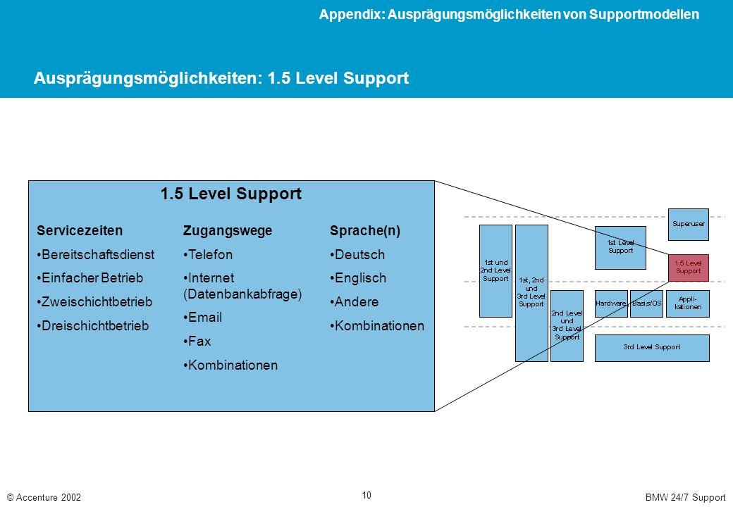 Ausprägungsmöglichkeiten: 2nd Level Support