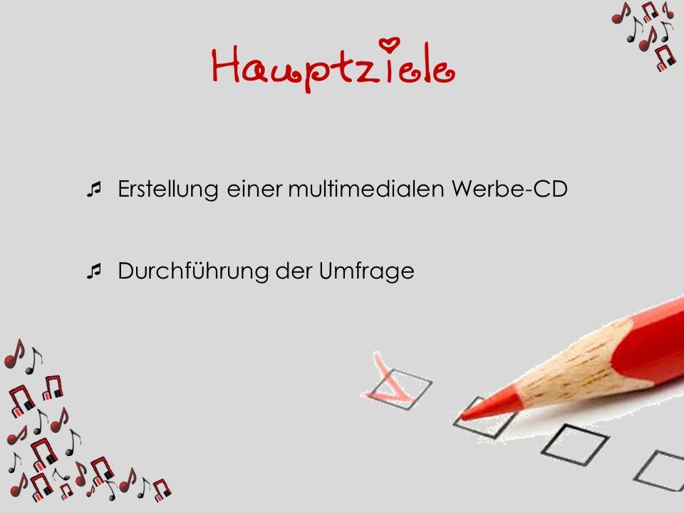 Erstellung einer multimedialen Werbe-CD