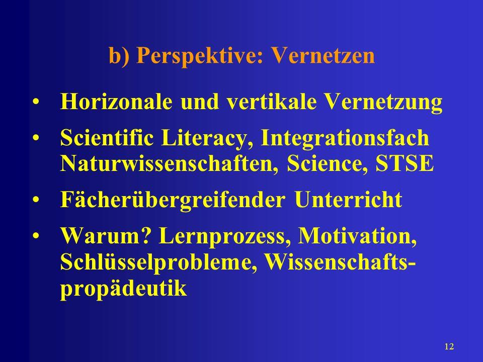 b) Perspektive: Vernetzen