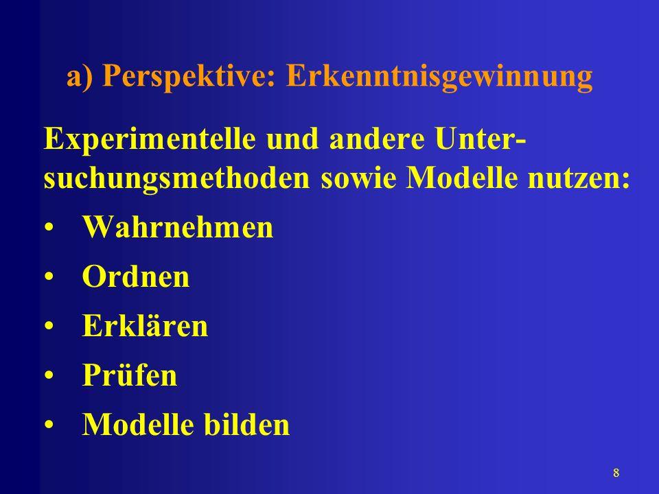 a) Perspektive: Erkenntnisgewinnung