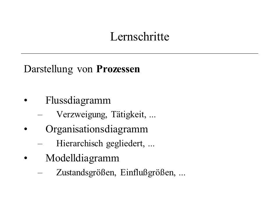 Lernschritte Darstellung von Prozessen Flussdiagramm