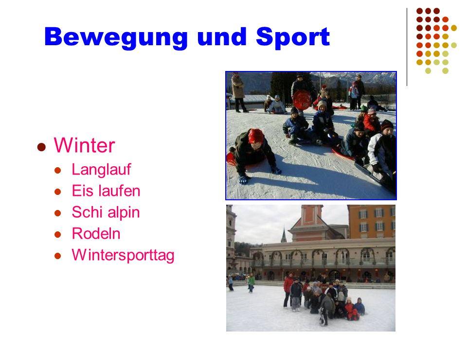 Bewegung und Sport Winter Langlauf Eis laufen Schi alpin Rodeln