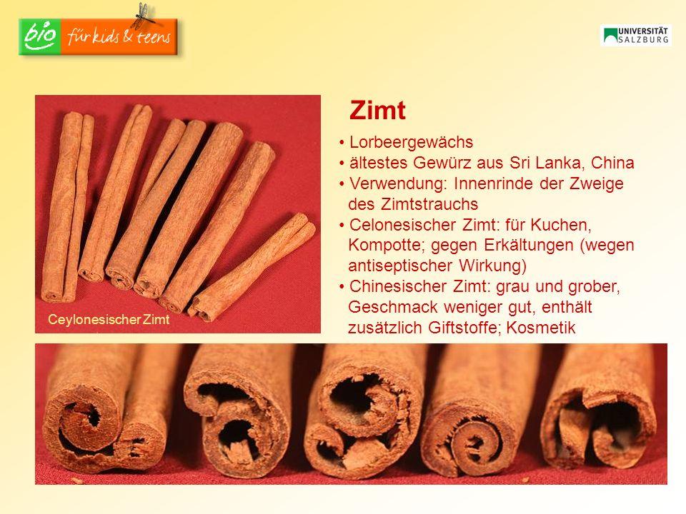Zimt Lorbeergewächs ältestes Gewürz aus Sri Lanka, China
