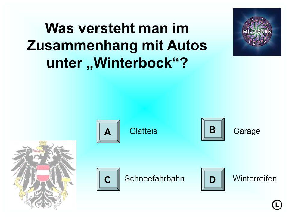 """Was versteht man im Zusammenhang mit Autos unter """"Winterbock"""