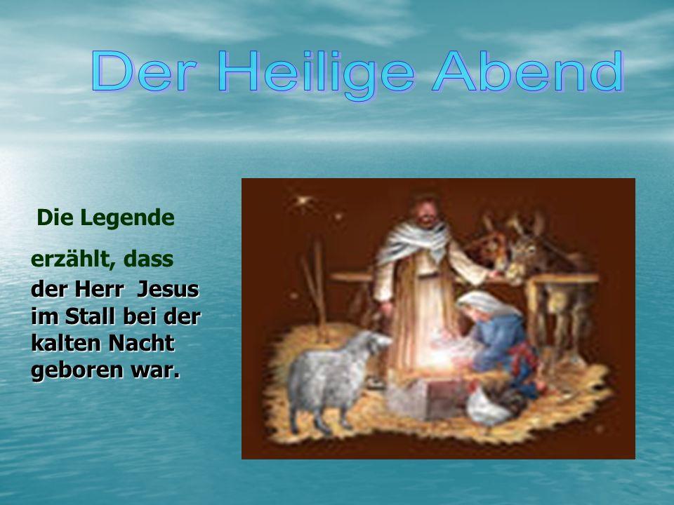 Der Heilige Abend Die Legende erzählt, dass der Herr Jesus im Stall bei der kalten Nacht geboren war.