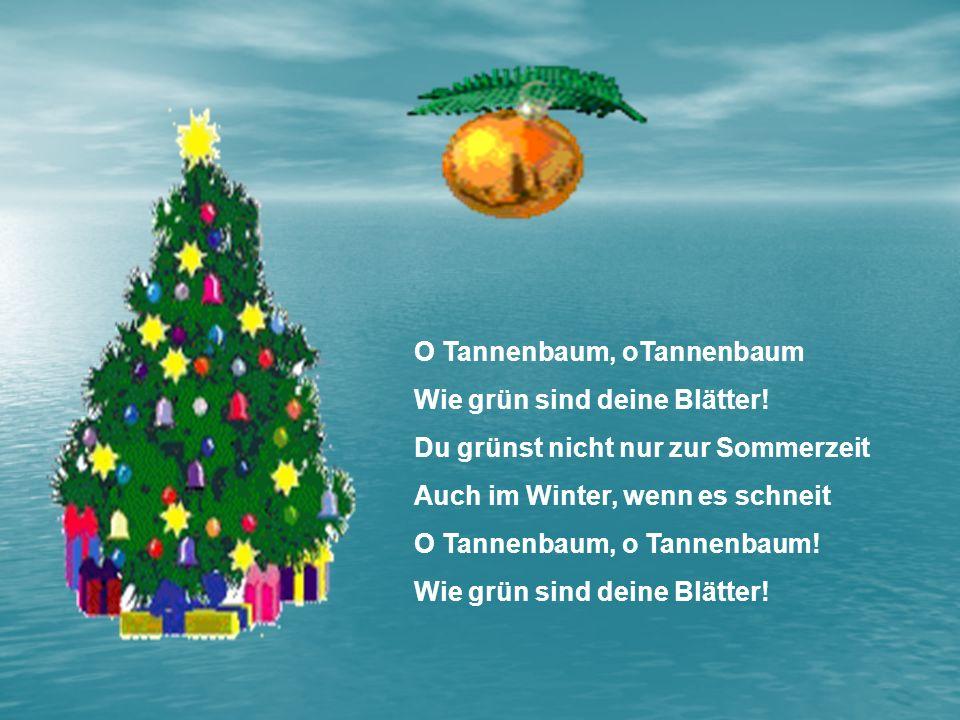 O Tannenbaum, oTannenbaum