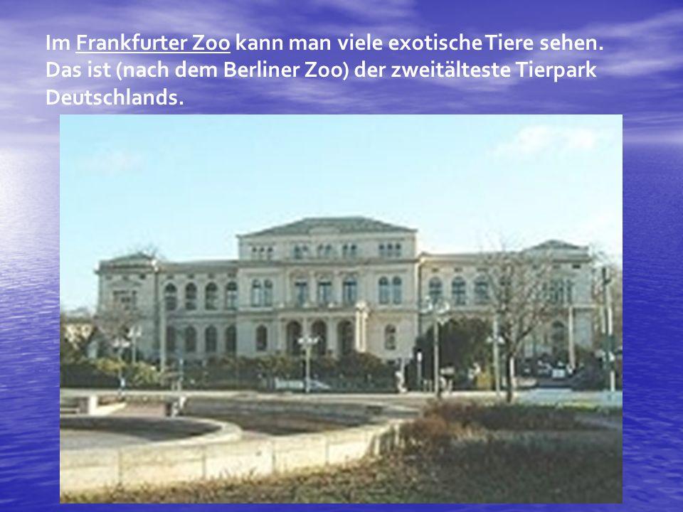Im Frankfurter Zoo kann man viele exotische Tiere sehen
