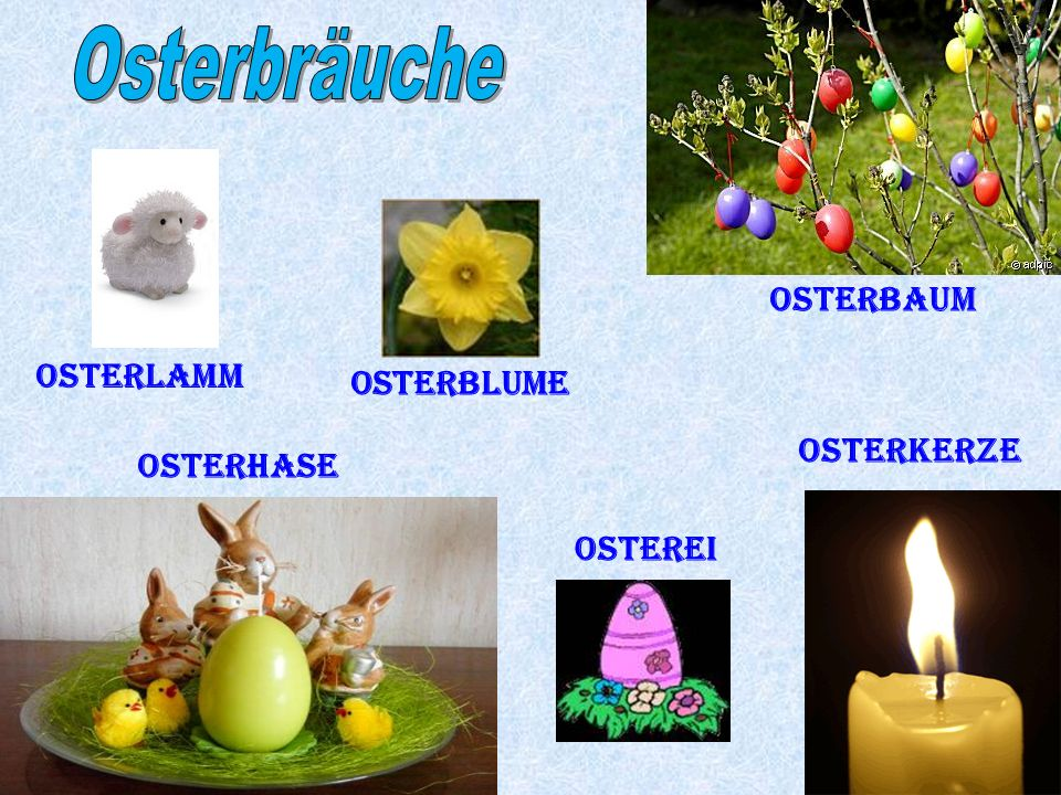 Osterbräuche Osterbaum Osterlamm Osterblume Osterkerze Osterhase