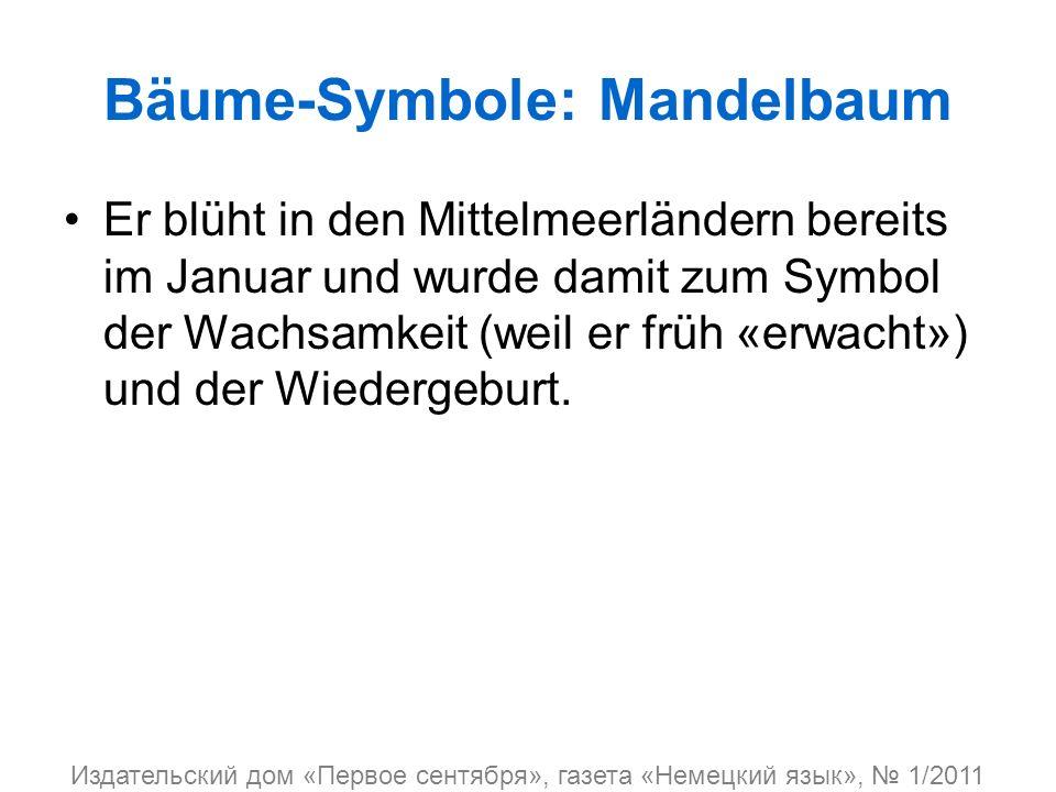 Bäume-Symbole: Mandelbaum