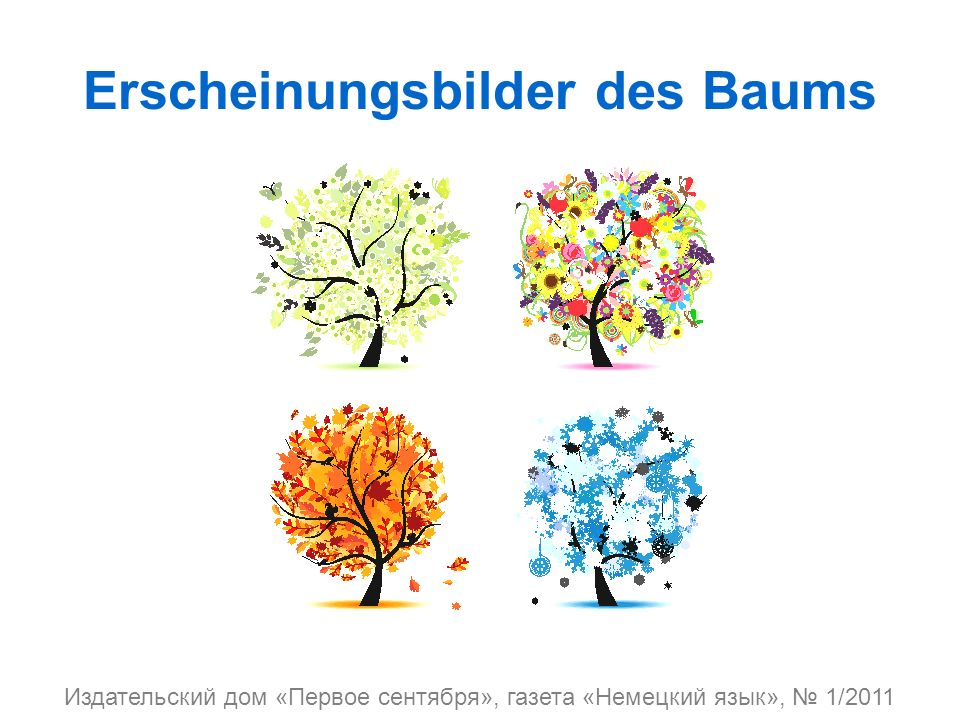 Erscheinungsbilder des Baums