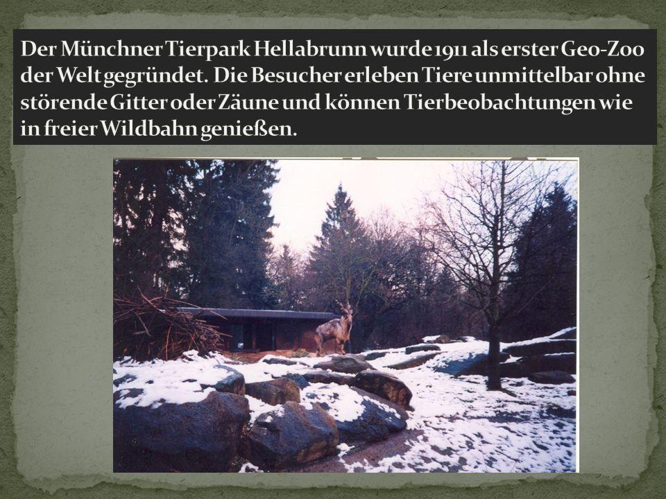Der Münchner Tierpark Hellabrunn wurde 1911 als erster Geo-Zoo der Welt gegründet.