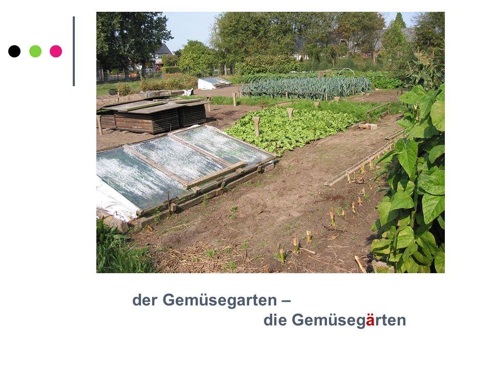 der Gemüsegarten – die Gemüsegärten