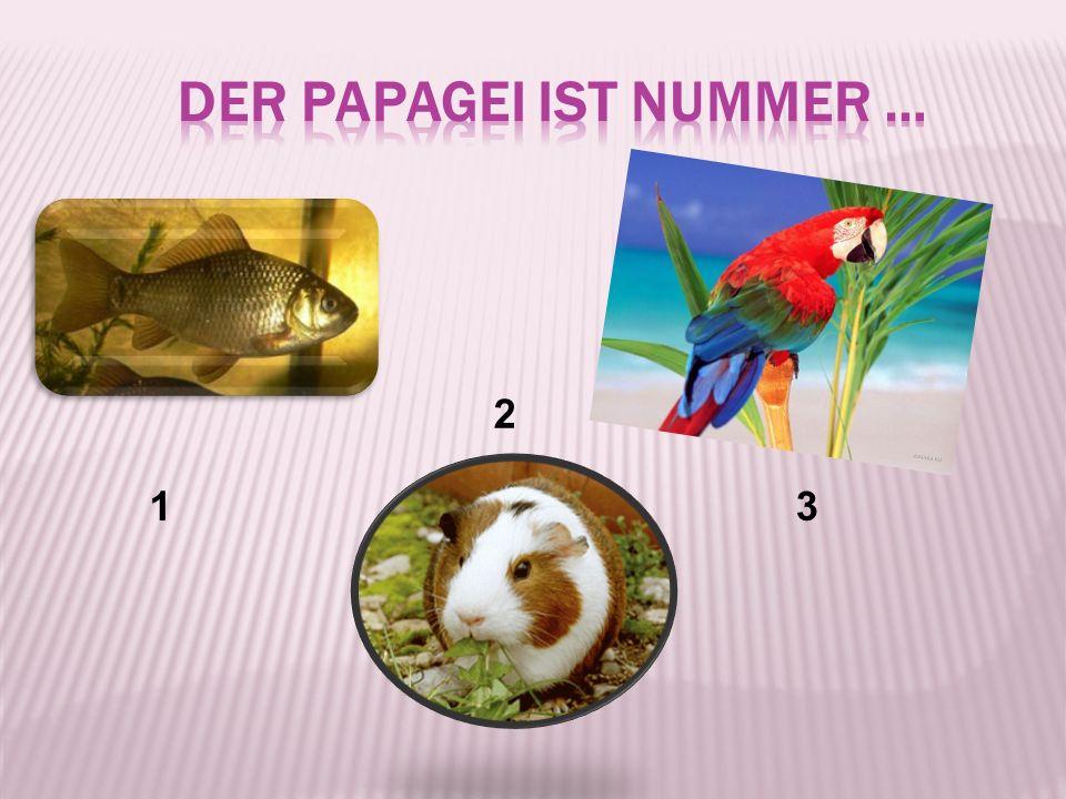 der Papagei ist Nummer …