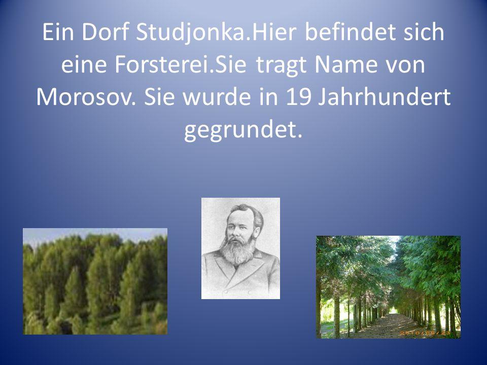 Ein Dorf Studjonka. Hier befindet sich eine Forsterei
