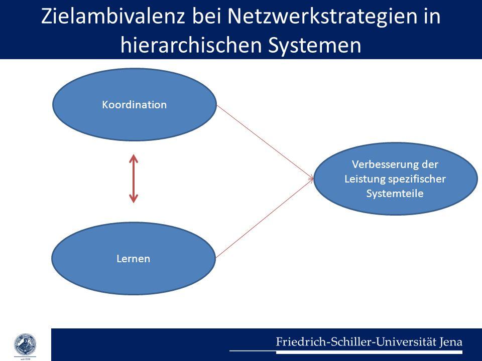 Zielambivalenz bei Netzwerkstrategien in hierarchischen Systemen