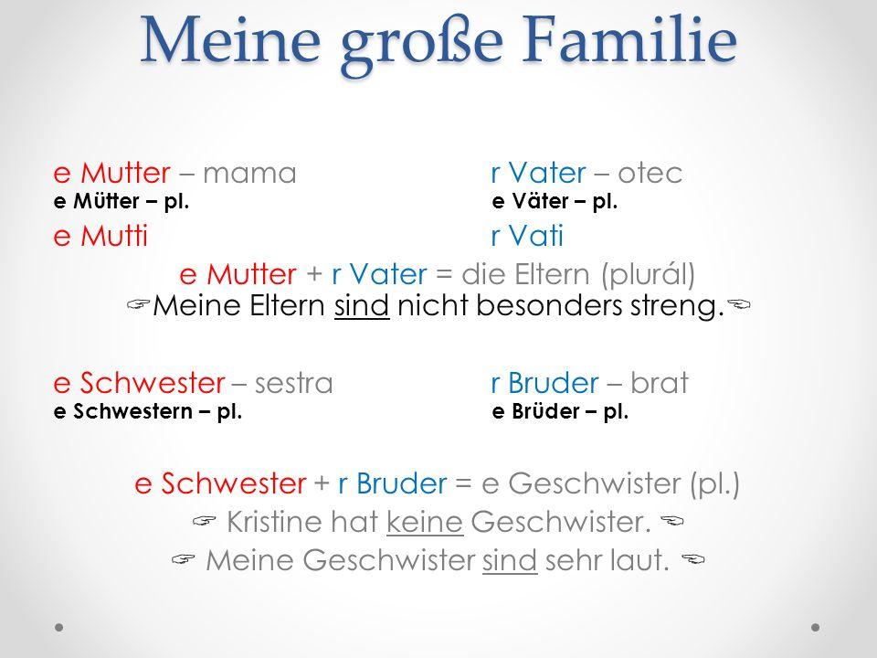 Meine große Familie