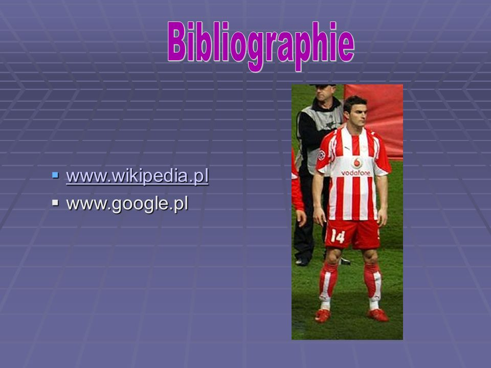Bibliographie www.wikipedia.pl www.google.pl 5