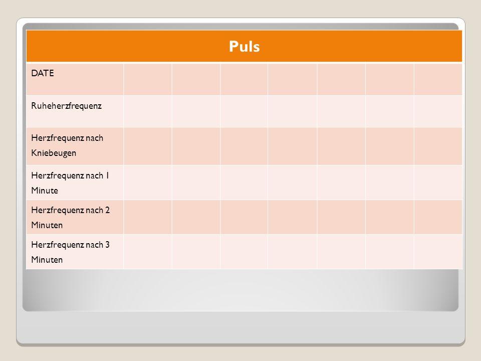 Puls DATE Ruheherzfrequenz Herzfrequenz nach Kniebeugen