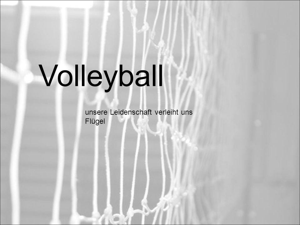 Volleyball unsere Leidenschaft verleiht uns Flügel