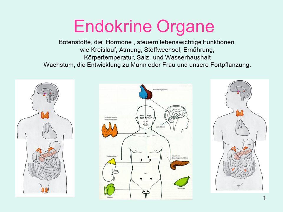 Endokrine Organe Botenstoffe, die Hormone , steuern lebenswichtige ...