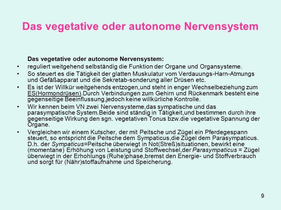 Das vegetative oder autonome Nervensystem