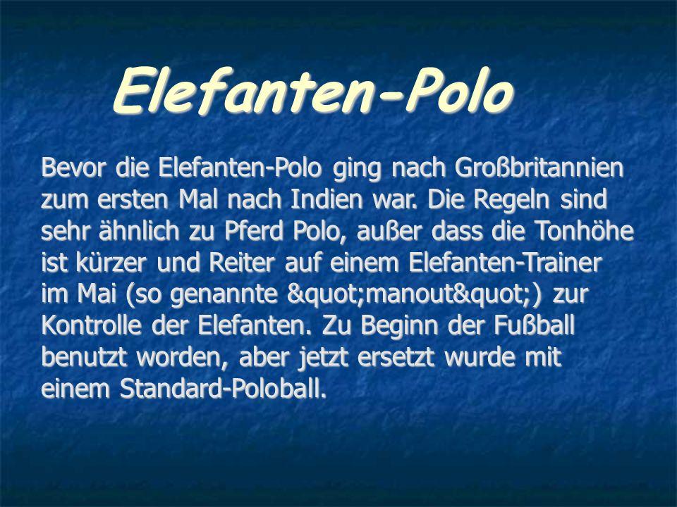 Elefanten-Polo