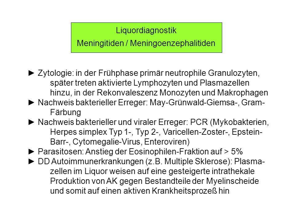 Meningitiden / Meningoenzephalitiden