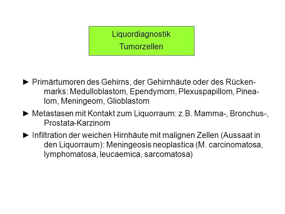 Liquordiagnostik Tumorzellen. ► Primärtumoren des Gehirns, der Gehirnhäute oder des Rücken-