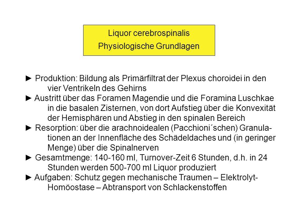 Liquor cerebrospinalis Physiologische Grundlagen