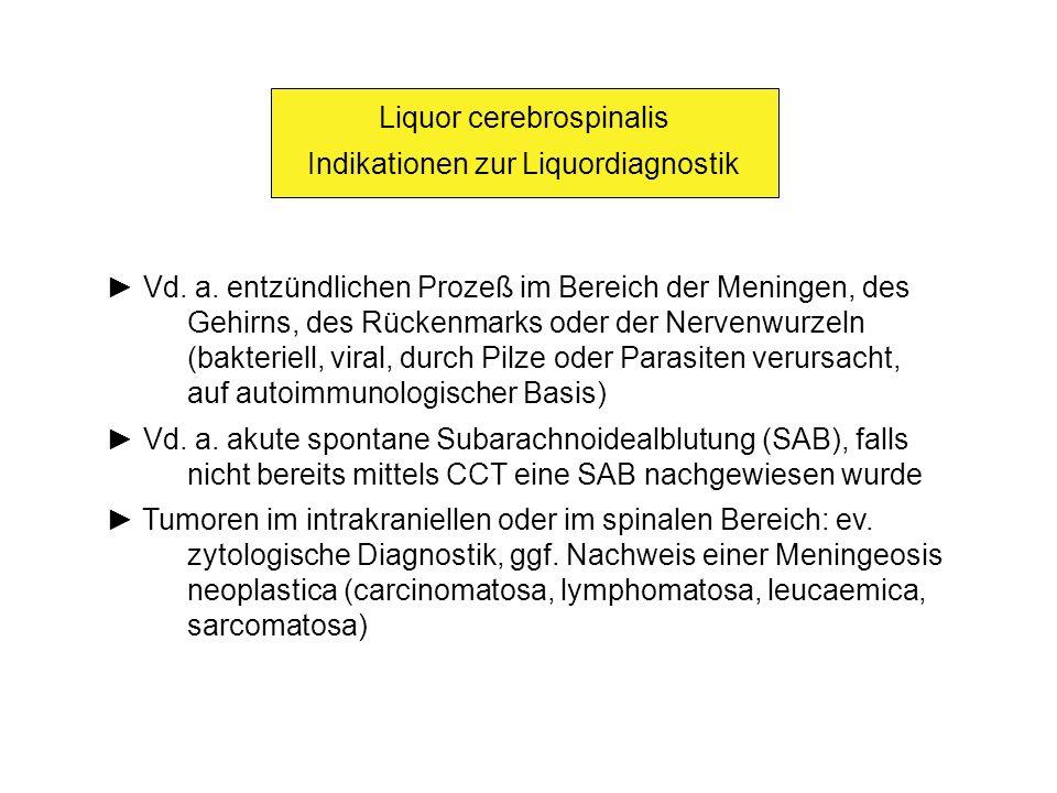 Liquor cerebrospinalis Indikationen zur Liquordiagnostik