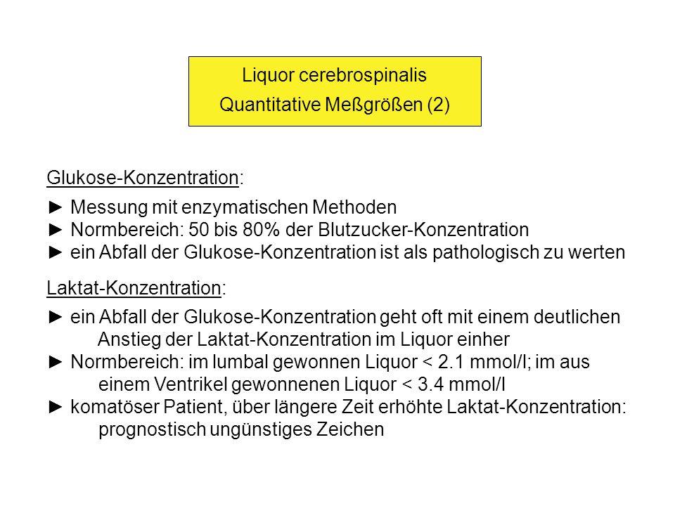 Liquor cerebrospinalis Quantitative Meßgrößen (2)