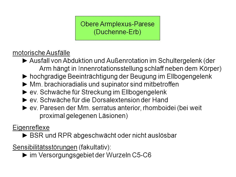 Obere Armplexus-Parese