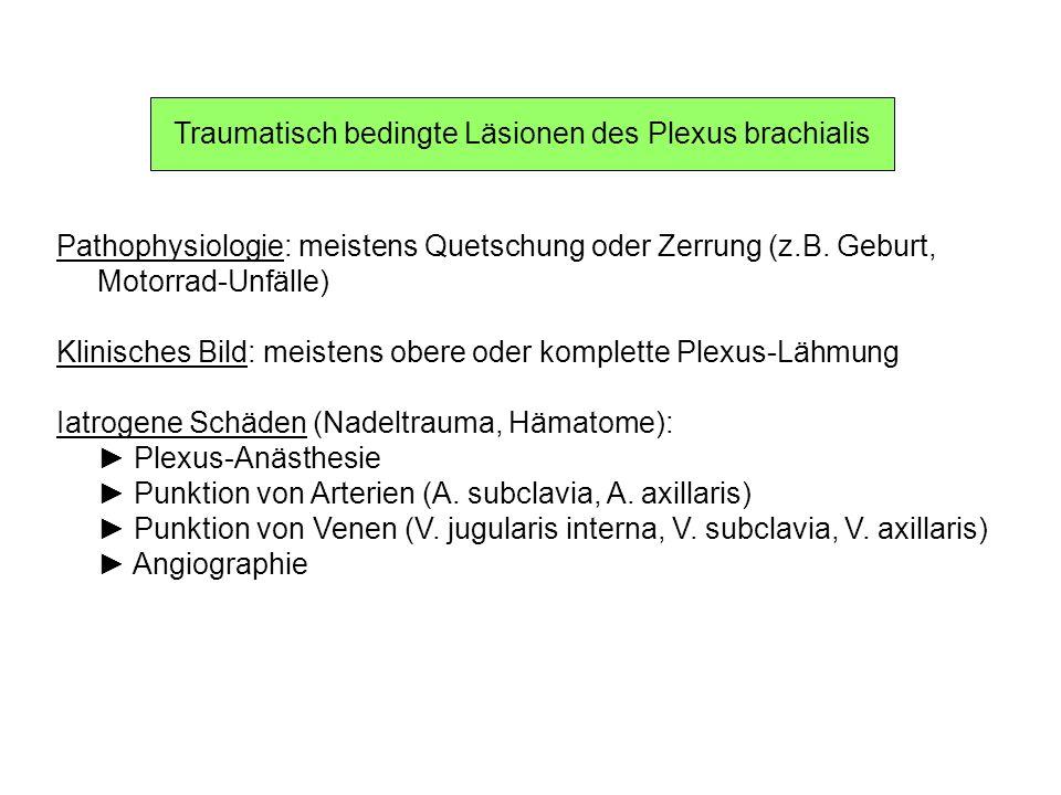 Traumatisch bedingte Läsionen des Plexus brachialis