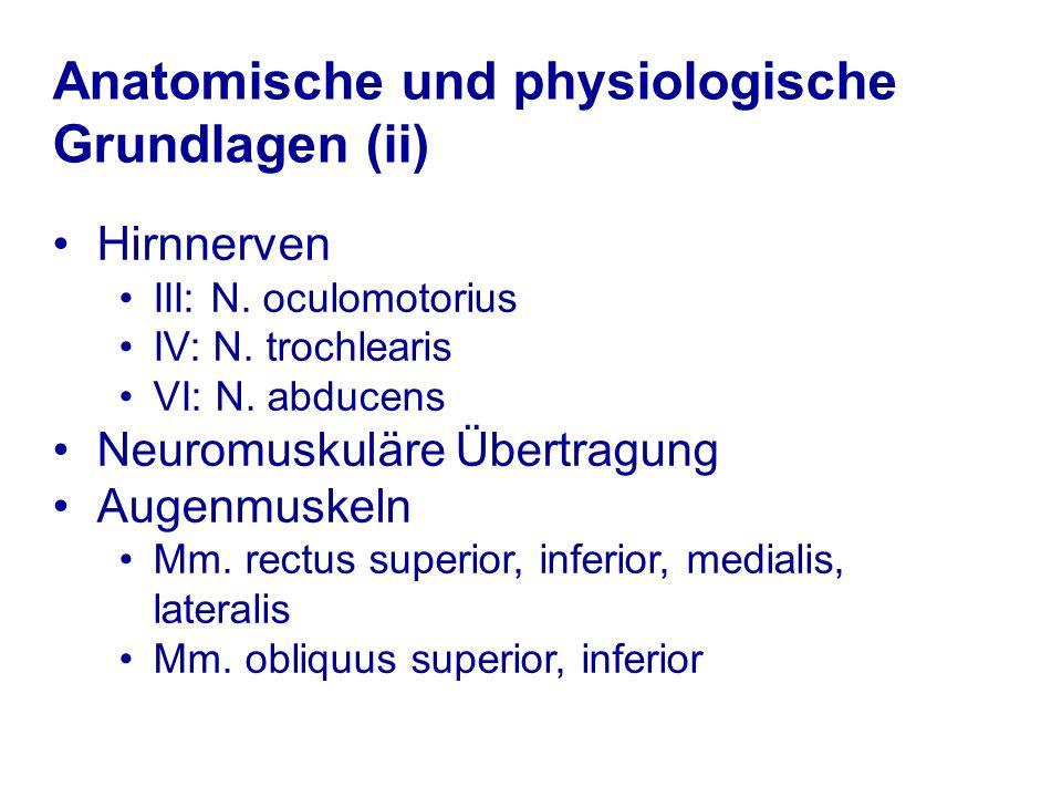 Anatomische und physiologische Grundlagen (ii)