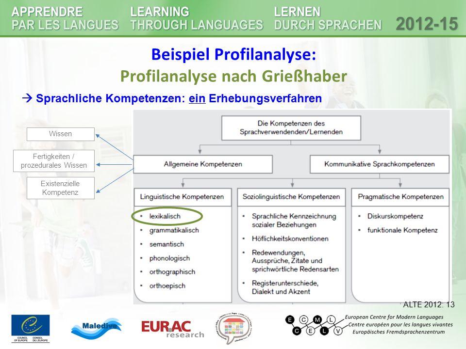 Beispiel Profilanalyse: Profilanalyse nach Grießhaber