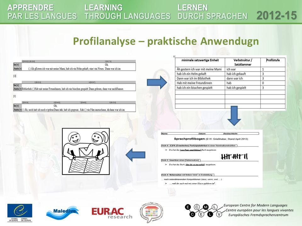 Profilanalyse – praktische Anwendugn