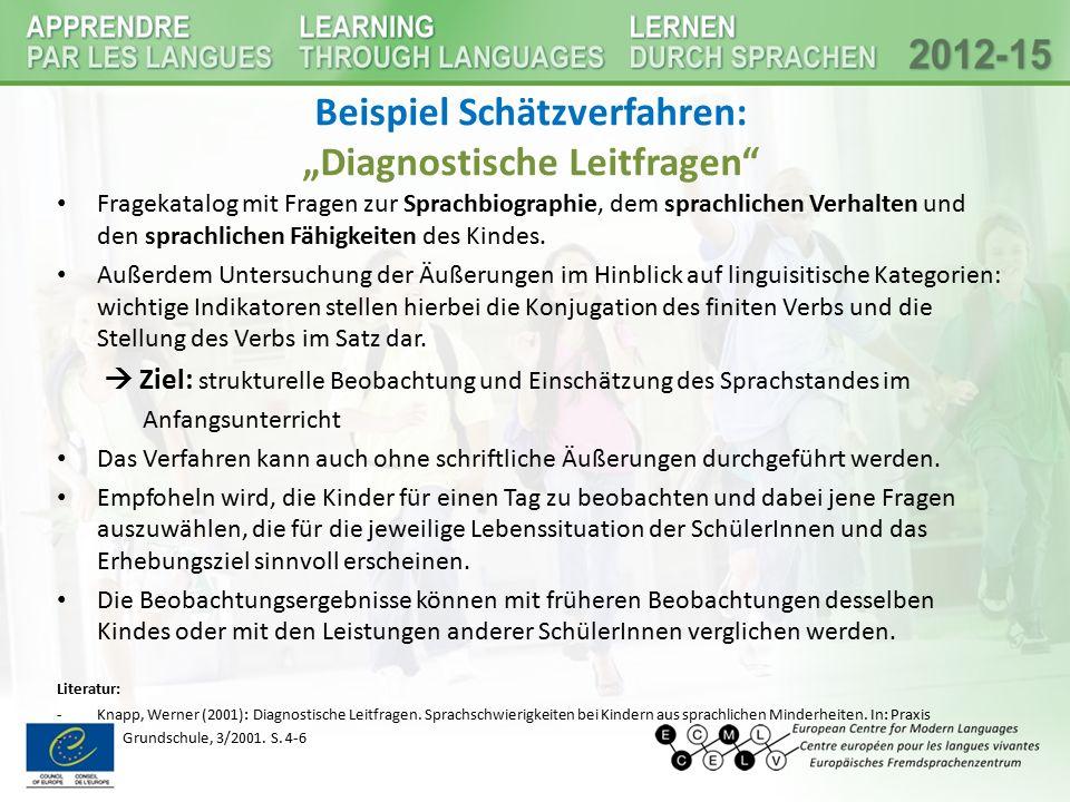 """Beispiel Schätzverfahren: """"Diagnostische Leitfragen"""
