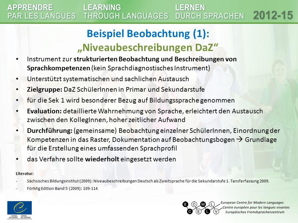 """Beispiel Beobachtung (1): """"Niveaubeschreibungen DaZ"""