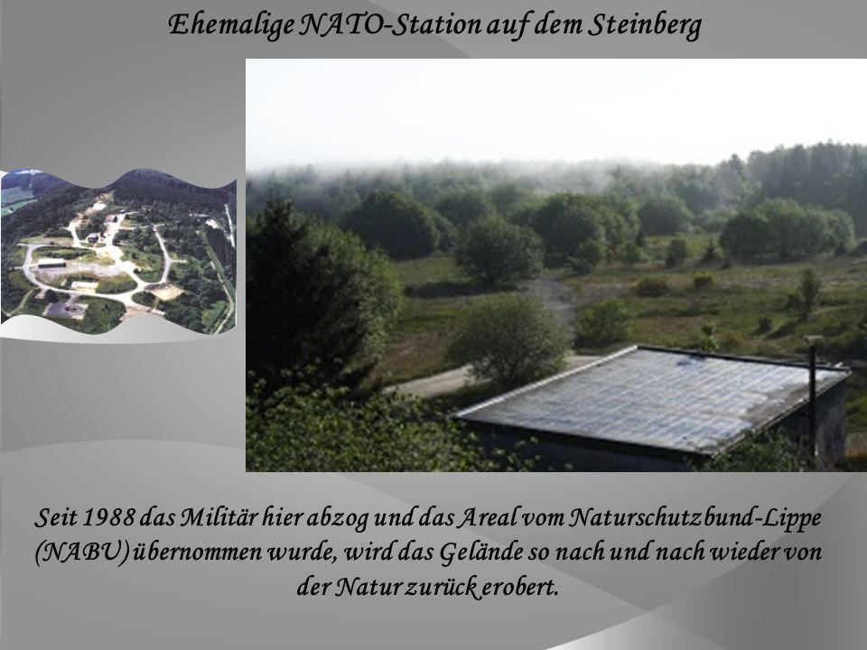 Ehemalige NATO-Station auf dem Steinberg