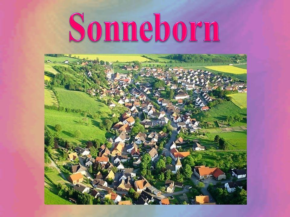 Sonneborn