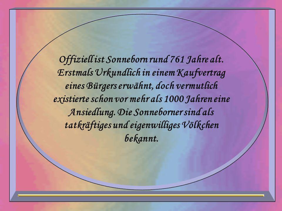 Offiziell ist Sonneborn rund 761 Jahre alt