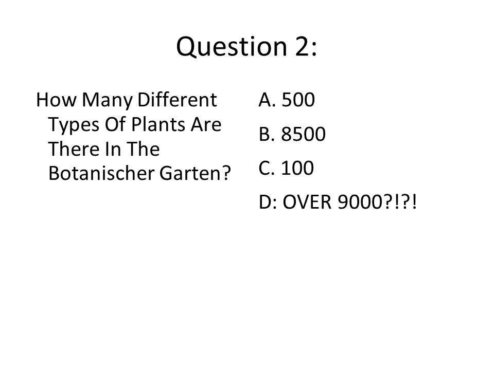 Question 2: How Many Different Types Of Plants Are There In The Botanischer Garten A. 500. B. 8500.
