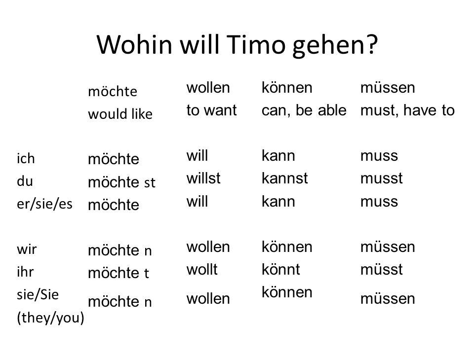 Wohin will Timo gehen wollen to want will willst wollt können