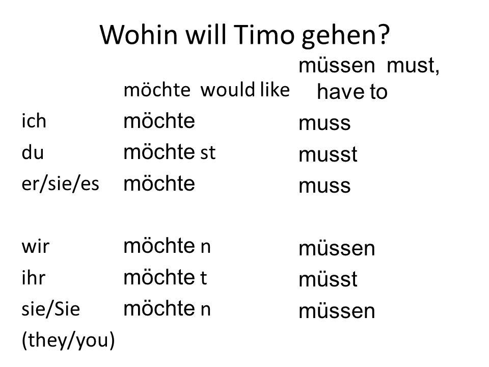 Wohin will Timo gehen müssen must, have to muss musst müssen müsst