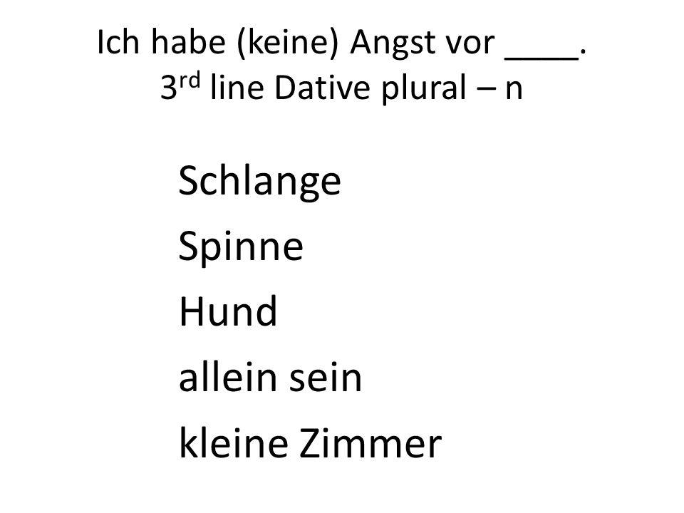 Ich habe (keine) Angst vor ____. 3rd line Dative plural – n