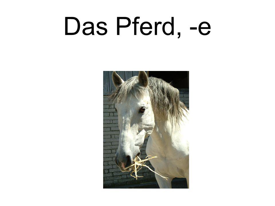 Das Pferd, -e