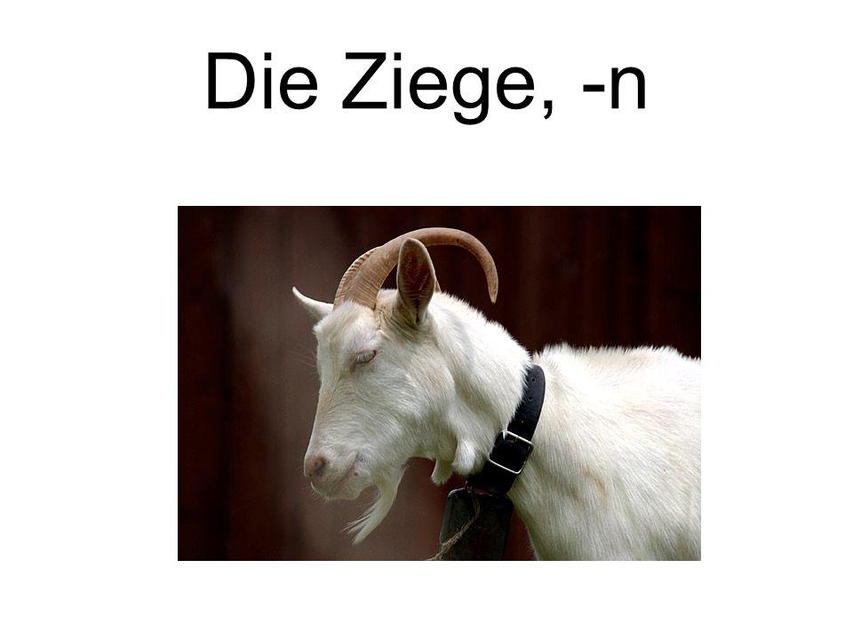 Die Ziege, -n