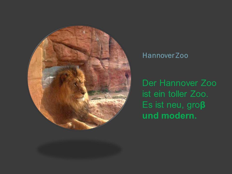 Der Hannover Zoo ist ein toller Zoo. Es ist neu, groβ und modern.