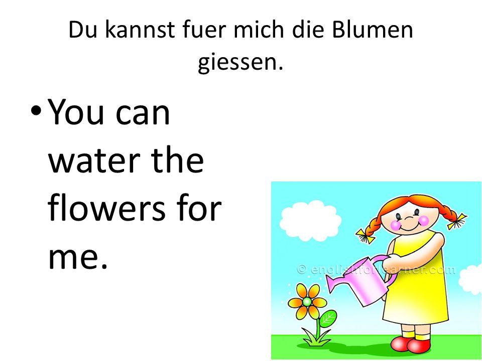 Du kannst fuer mich die Blumen giessen.